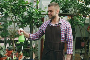 Attractive man gardener in apron watering plants and flowers with garden sprayer in greenhouse