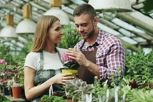 Attractive couple work in greenhouse. Young woman and man florists in apron talking and discussing about flowers