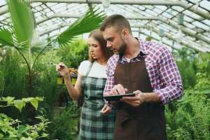 Young couple work in garden center. Attractive man cheking flowers and woman using tablet computer during working in greenhouse