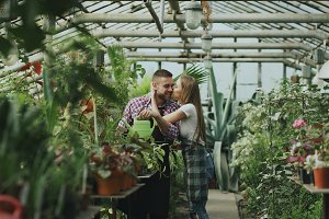Happy young florist couple in apron working in greenhouse. Cheerful woman embrace and kiss his husband watering flowers with garden pot
