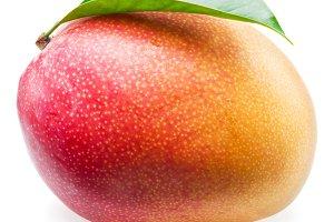 Mango fruit on the white