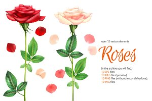 Romantic Roses Set