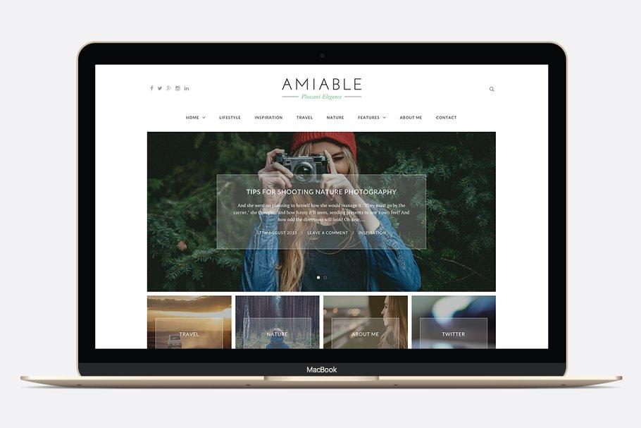 Amiable - A WP Blogging Theme