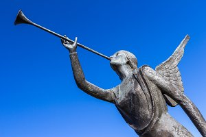 Angel trumpeter against blue sky