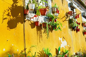 Yellow wall, Lisbon