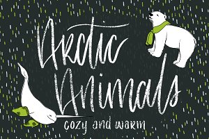 Hand-Drawn Arctic Animals Design Kit