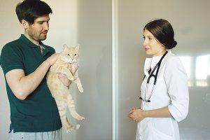 Cat owner man talking with vet woman in veterinarian office