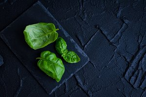 Green basil leaves