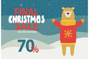 Final Christmas Sale Holiday Discount Promotion