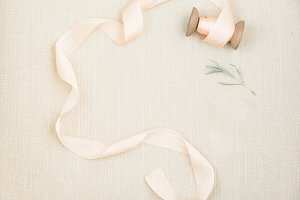 Silk Ribbon + Greenery Stock Image