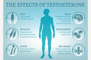 Testosterone Effects Infographics
