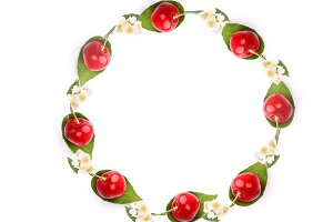 frame of juicy cherries with leaves with flowers isolated on white background a top view a flat lay