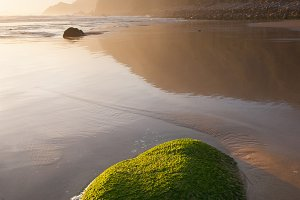 Green rock on the beach