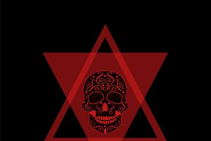 Skull icon red in triangle