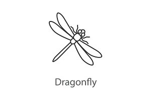 Dragonfly linear icon