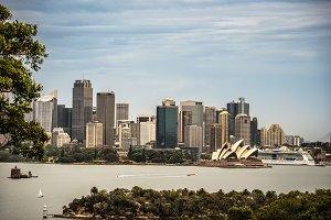 Skyline of Sydney downtown viewed from Taronga hill, Australia