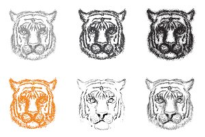 Set of Abstract Tiger
