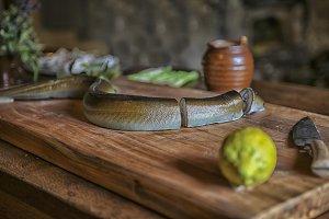 Fresh eel in chunks