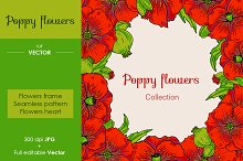 Poppy flowers set, vector and raster