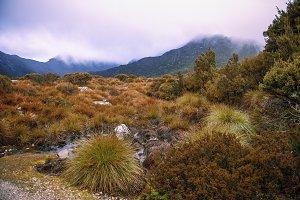 Cradle mountain in Tasmania on a clo