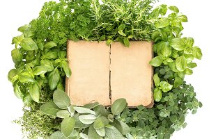 Recipe book with fresh herbs