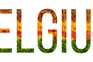 word belgium country is written with leaves on a white insulated background, a banner for printing, a creative developing country colored leaves belgium