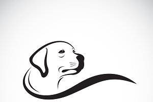 Vector of a dog head design. Pet.