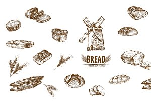 Bundle of 15 bread vectors set 6
