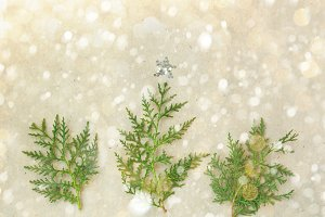 Christmas tree made of thuja branches and decorations star on rustic background. new year concept. Flat lay, top view