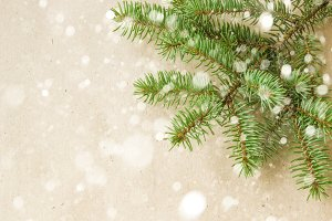 Festive christmas corner with fir branches and snowflakes with snow on rustic beige background