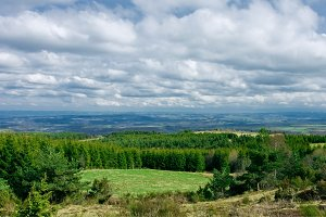 Landscape In The Auvergne, France