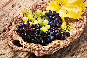 autumn grapes on tray