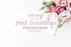 Pink Flower Stock Photo Bundle