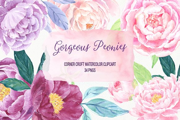 Watercolor Gorgeous Peonies