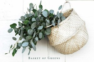 Greenery Basket Styled Stock