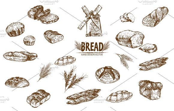 Bundle of 15 bread vectors set 7
