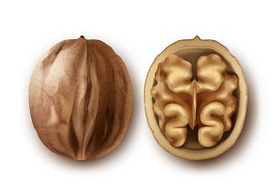 Two whole and cracked walnuts