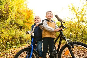 Cute little boys cycling in sunny autumn park.