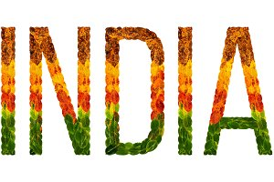 word india country is written with leaves on a white insulated background, a banner for printing, a creative developing country colored leaves india