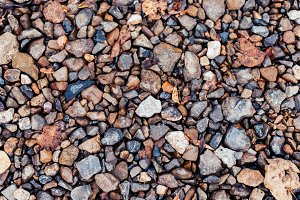 Colored stones in park on the road, paving stones. In the city by the wayside. Autumn day colorful boulders.