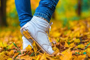 A man stops walking. The girl's girlfriend's. Hot girls on the nature in the park among the leaves of yellow. Autumn park in bright colors