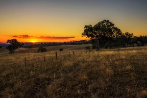 Countryside landscape at sunset in Australia