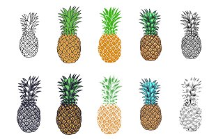 Pineapple Hand Drawn