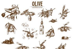 Bundle of 10 olive vectors set 2