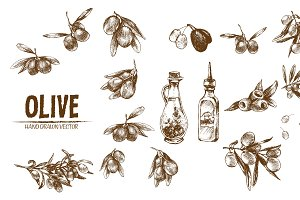 Bundle of 10 olive vectors set 3