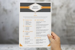 2 in 1 diamond modern Word resume