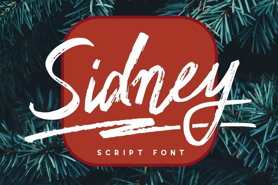 Sidney [clean&rough]