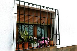 Window with bars and flower pots