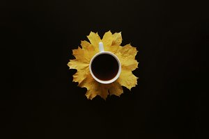 White coffee cup on yellow leaves