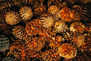 Artificial pine cone decorated for Christmas tree